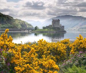 12_scotland